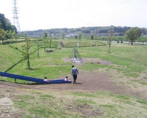 高台から見た公園の様子