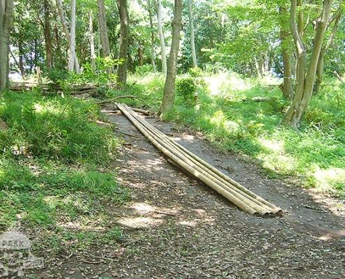 竹の滑り台?
