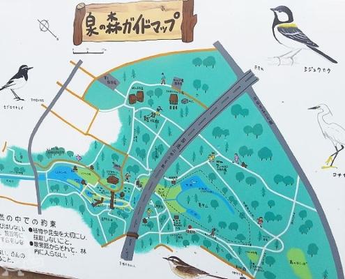 泉の森ガイドマップ