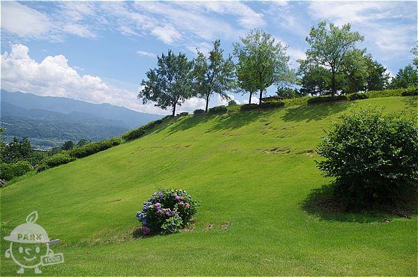 急な傾斜の芝生エリア