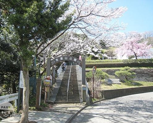 公園入口(役場口)