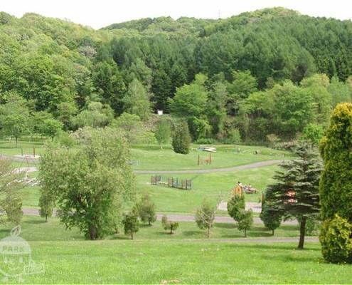 プンゲンスの丘