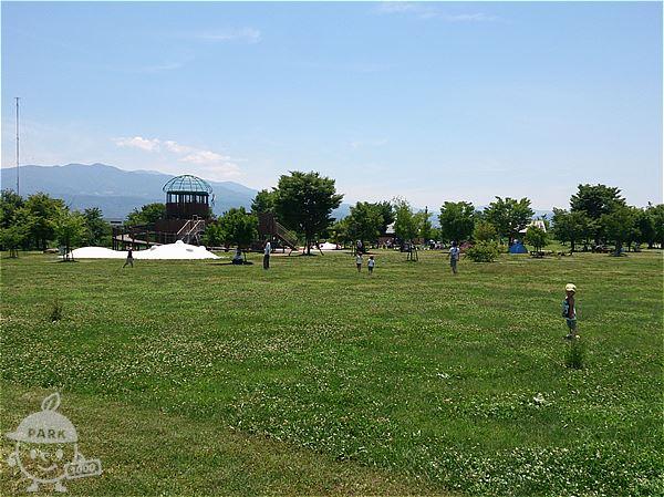 芝生広場と遊びの森