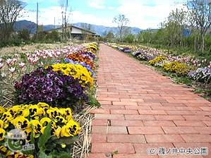 レンガ道ガーデン