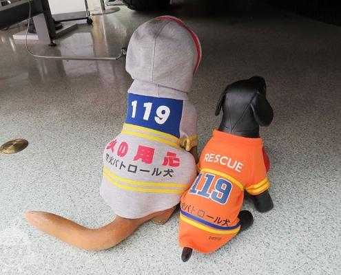 防火パトロール犬