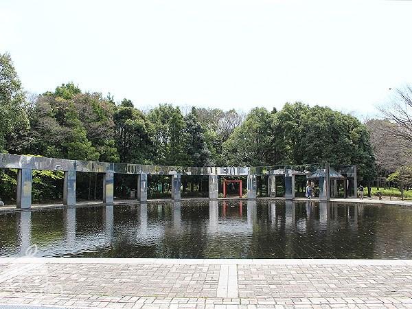 きらめきの池