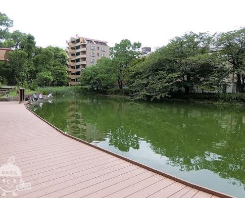 ひょうたん池と釣りデッキ