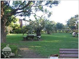 プール前広場