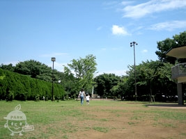 夢見ケ崎公園