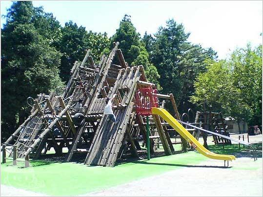 淵野辺公園