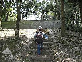 野鳥の観察壁