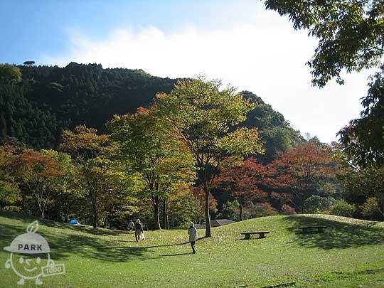 丹沢湖ダム広場公園