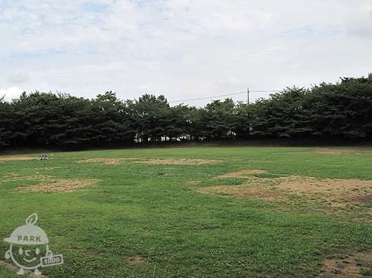 山崎公園・くさぶえの道