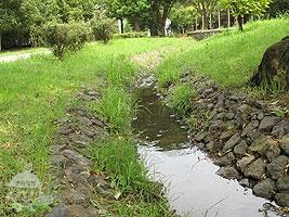 小川で水遊び