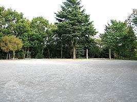 遊びの森の自由広場