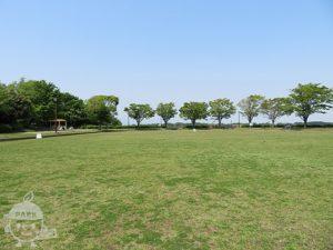 東俣野中央公園