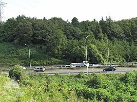 東名高速が見えるよ