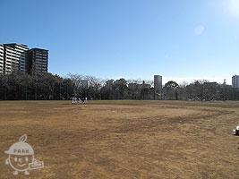 多目的球技広場