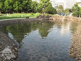 徒渉池(ジャブジャブ池)