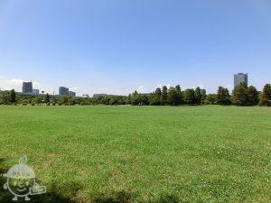 辰巳の森海浜公園・辰巳の森緑道公園