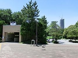 辰巳の森海緑道公園