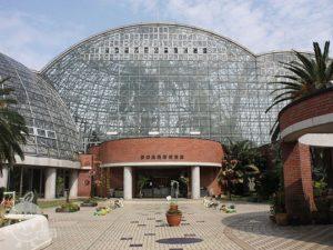 夢の島熱帯植物館・夢の島公園