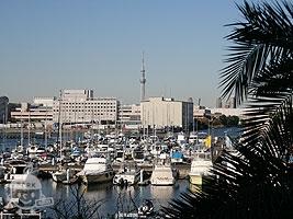 東京夢の島マリーナ