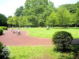 幼児用のサイクリング広場