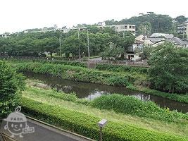 公園から望む野川