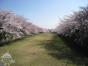 奈良原公園・宝野公園・鶴牧第2公園