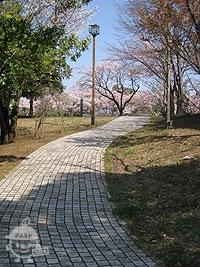 奈良原公園駐車場から園内に向かう道