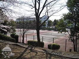 奈良原公園にあるテニスコート