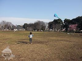 原っぱ広場