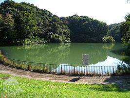 築池(つくいけ)