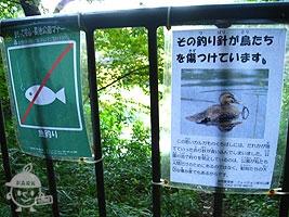 釣りは禁止