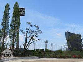 富士森公園野球場