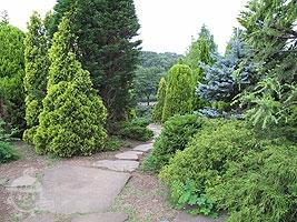 花とコニファー園