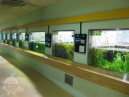 水生物園の水生物館