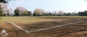 サッカー場、ソフトボール場