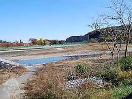 入間川の河原