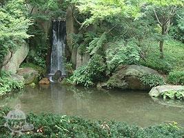 日本庭園内の滝