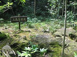 三島溶岩流