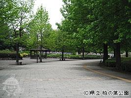 四季の広場