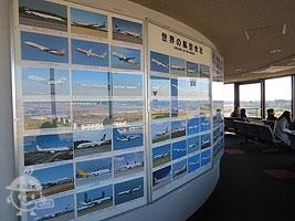 世界の航空会社