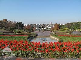 「彫刻の広場」を丘の上から見た様子