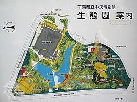 生態園案内図