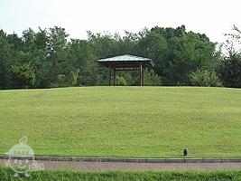 雑木の丘と東屋