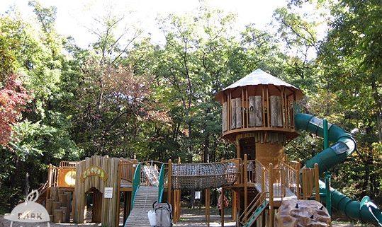 山梨県森林公園 金川の森