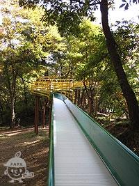 全長40mもあるローラー滑り台