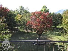 花見台からの景色